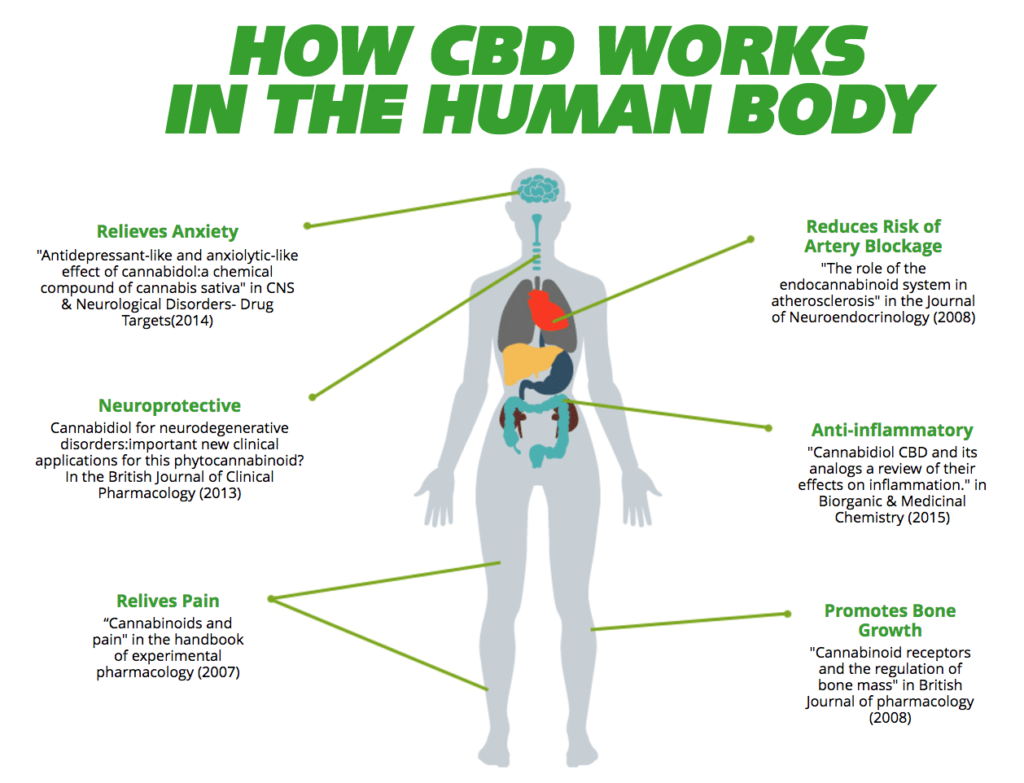 hempworx 500 cbd oil benefits
